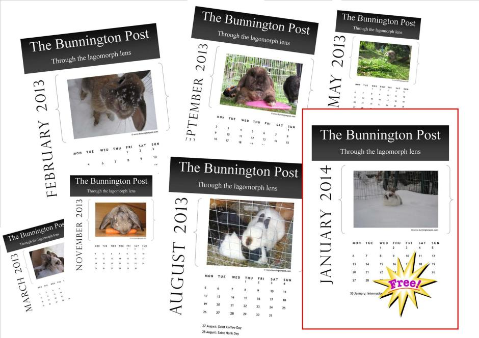 Organise your year with your very own Bunnington Post 2013 Calendar!