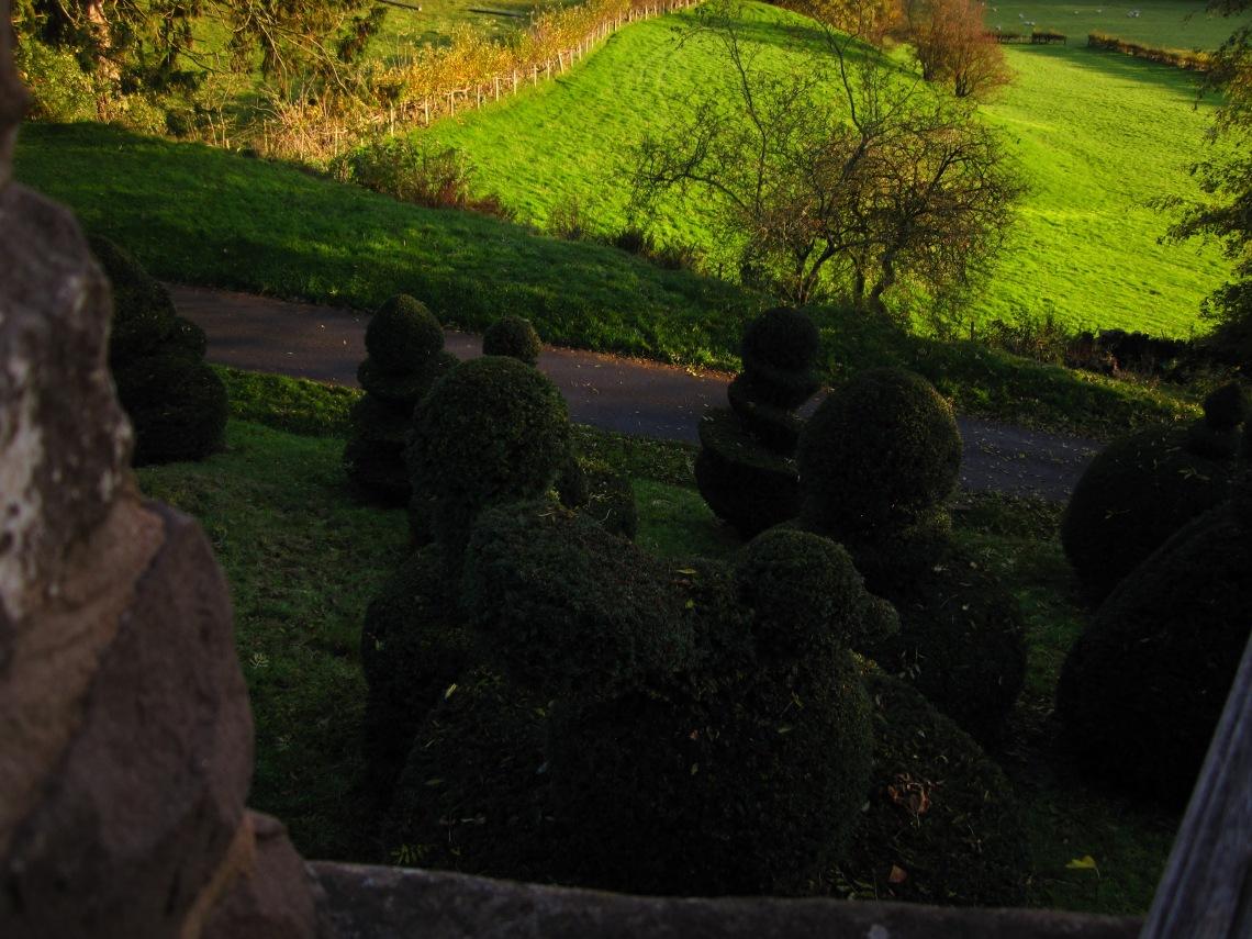 Bouffe's Topiary