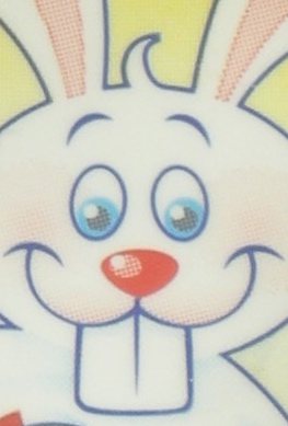 BunnyTube2