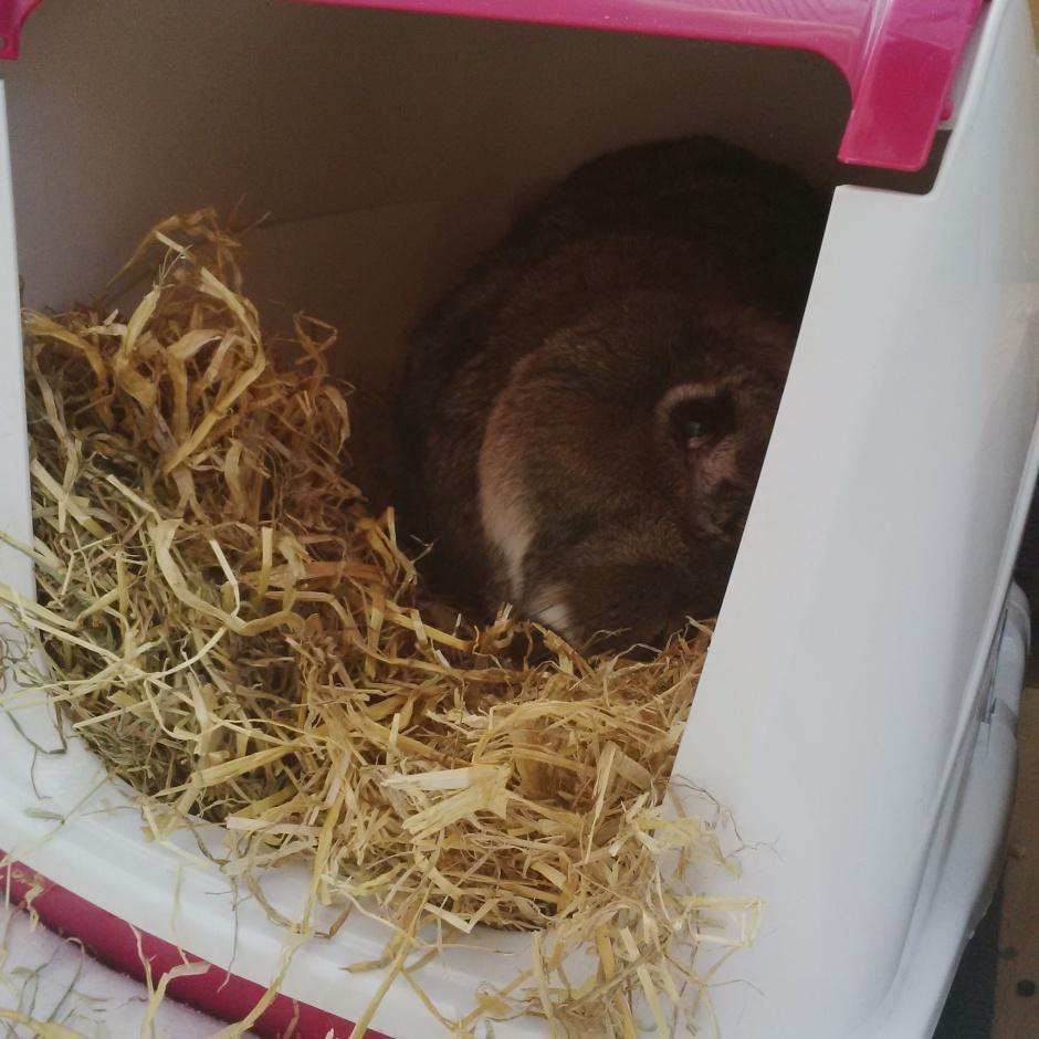 Bouffe Hay Box
