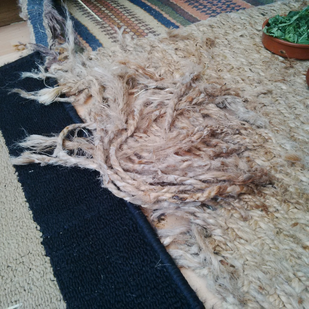 Rug in a demolished state