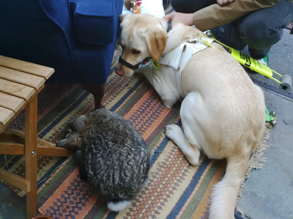 Fletch and Bouffe meet