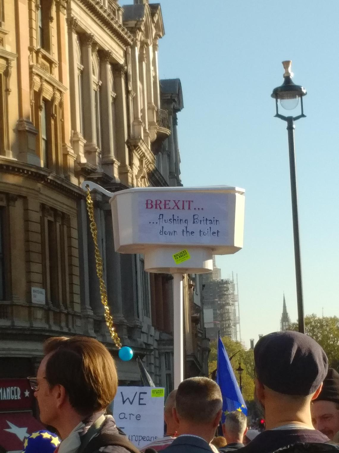 A street scene from the People's Vote March in London, 20th October 2018. A protester carries a toilet cistern aloft, complete with pull chain. The cistern reads 'Brexit... Flushing Britain down the toilet'. It is seen against a blue sky and tall, honey-coloured buildings on the left. A street lantern cuts into the blue of the sky on the right side of the image. The backs of the heads of several people are in the bottom of the photo.